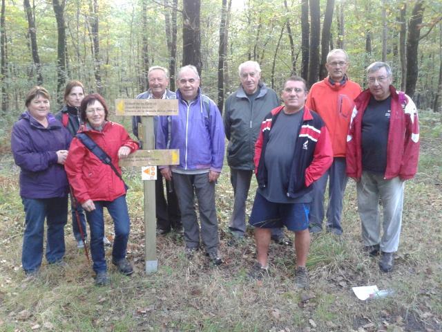 2/2 Marche en forêt de Riaillé le 18/10/2013